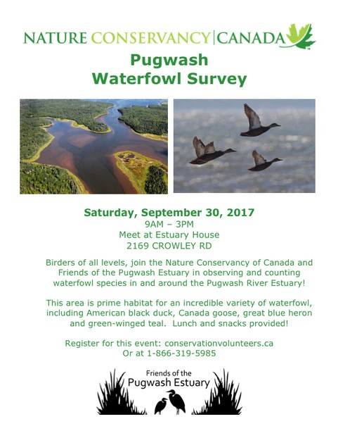 thumbnail_Pugwash_Waterfowl_Survey_CV_poster.jpg