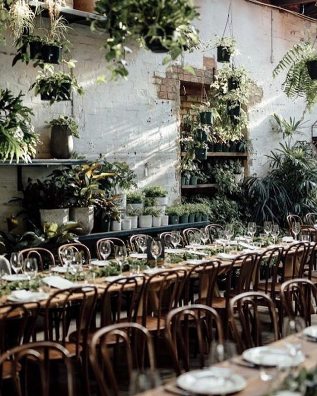 Still one of our favourite events, at @glasshausnursery 🌿 - image by @junebugweddings