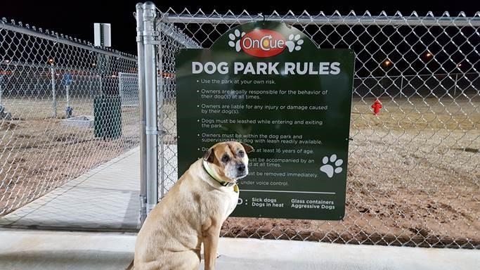 122_Dog Park_2732.jpg