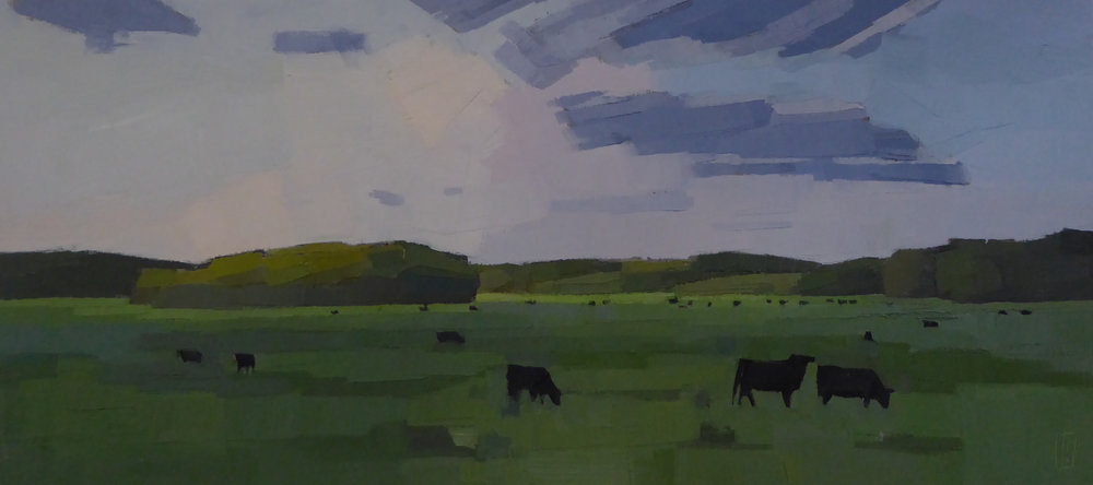 Black Cows, Green Field 10 x 22  Collection the Artist
