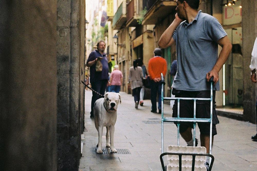 Carrer del Carme, Barcelona, Spanien, Juni 2014