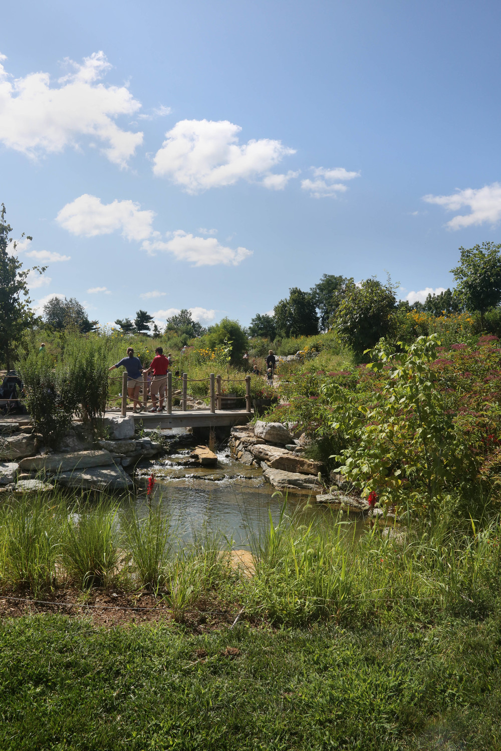 Kentucky Children's Garden