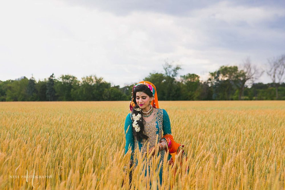 portrait of pakistani bride in bleu lehenga in the middle of wheat field in industrial farm in ottawa