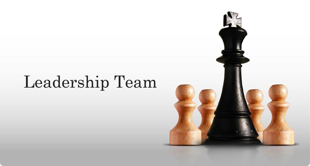 company needs a leader  Leadership