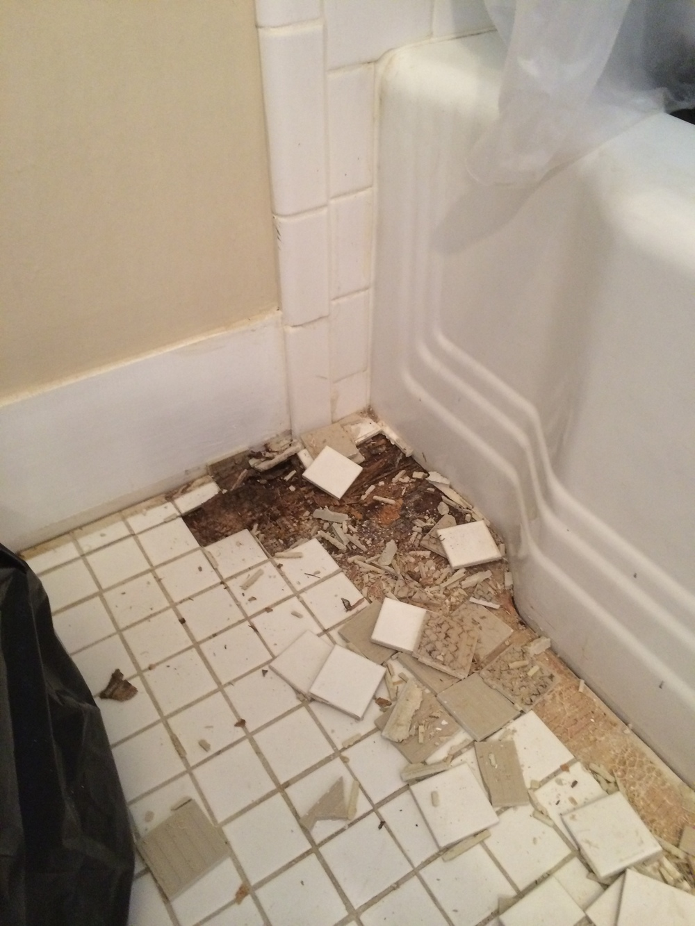 Rotting plywood from improper sealing of tile -- and father time -- was just one of the obstacles of this renovation.