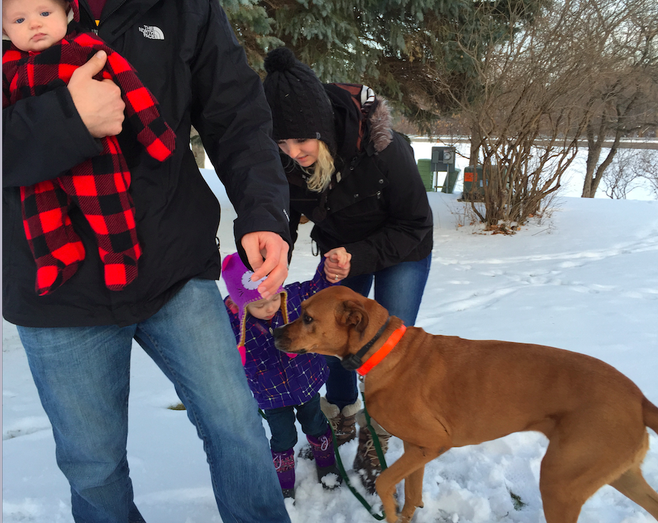 Family life with dogs can be messy. For the Richards family, it's worth it. The good and bad.