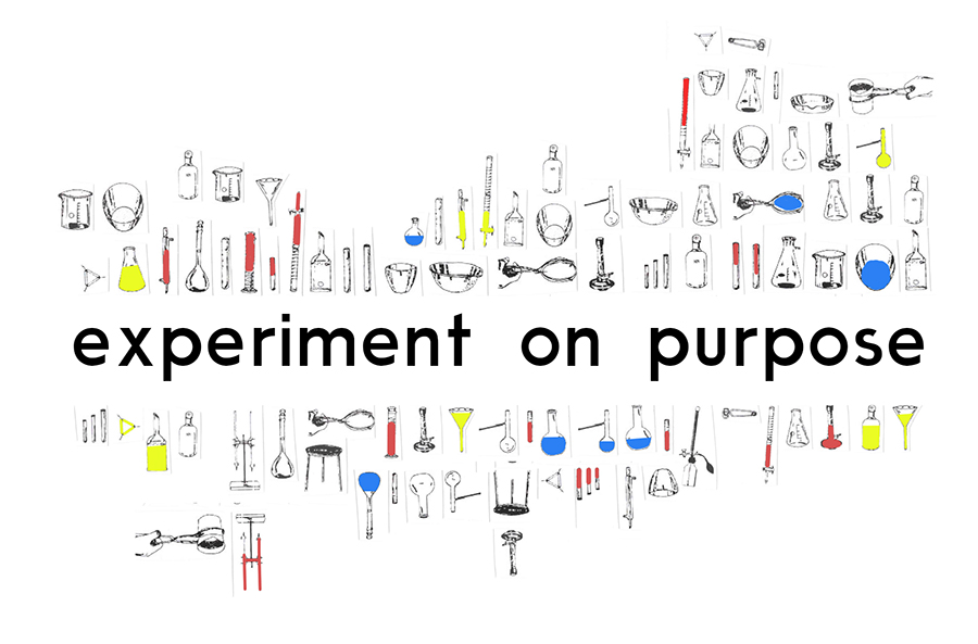 Experiment on Purpose