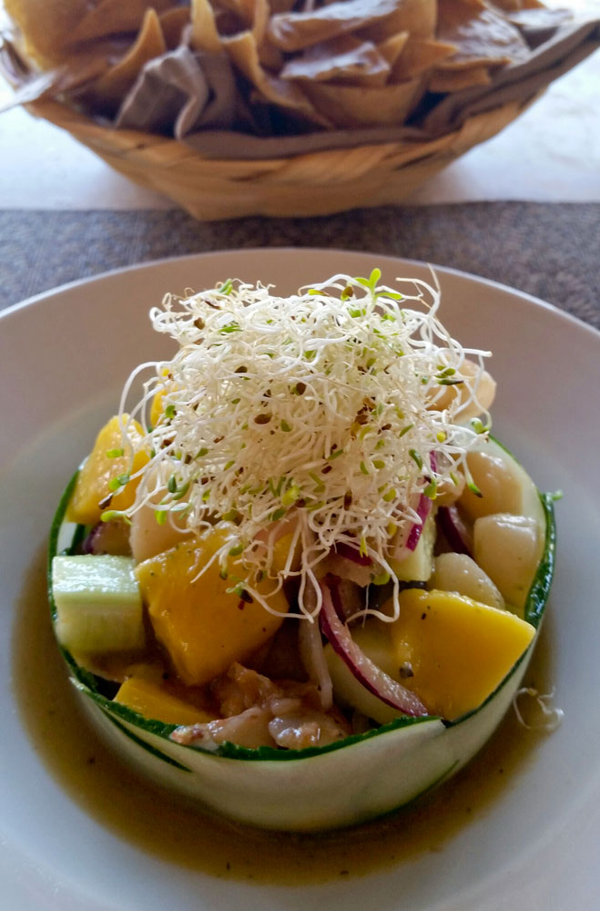 113-summer-dish-with-sprouts.jpg