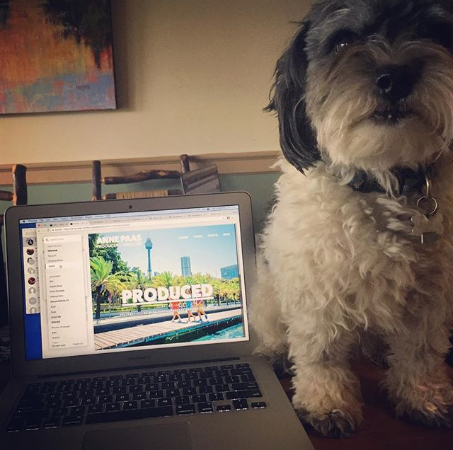 When you on vacation but you also gotta side hustle. #dogswhocode #webdeveloping #webbuilder #webdesign #girlswhocode #coding #webdeveloper #websitedesign #websitebuilder #websitedesigner