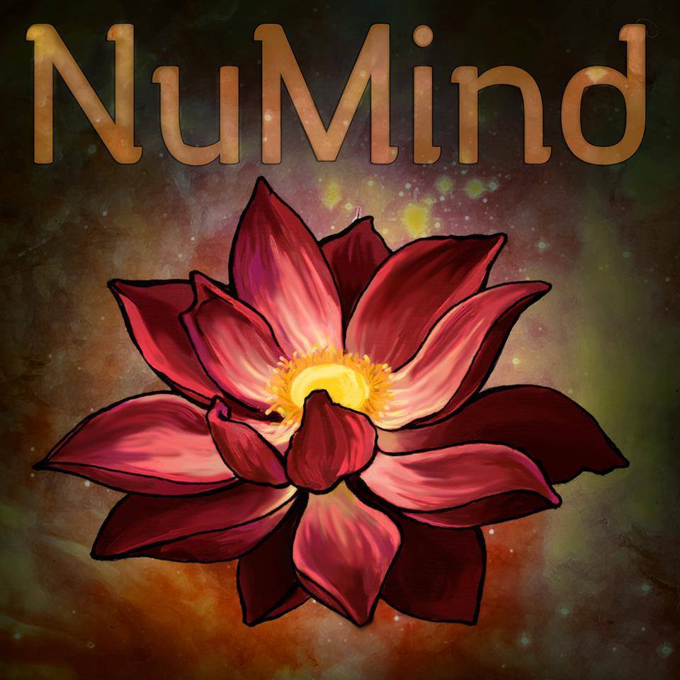 NuMind Collective is an experience illuminating the beauty & darkness within the world through a fusion of Live Electronic, Jazz, and Hip Hop. Headed by Kevin Andrews, NuMind has now grown to become a collective of passionate musicians working towards pushing the envelope in all ways.