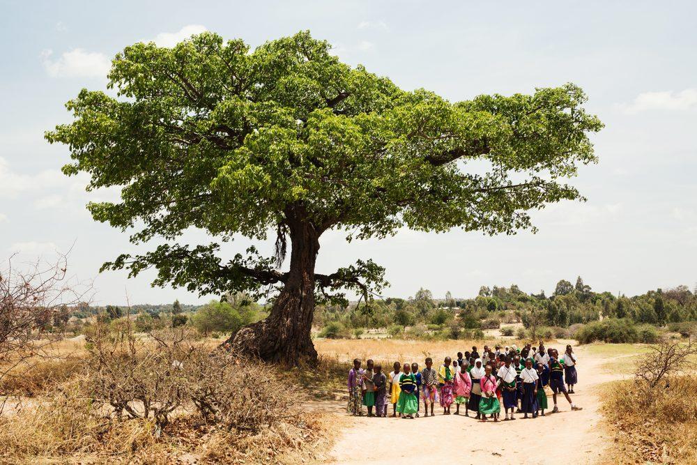 HUMAN_Tanzania_stills-248-min.jpg