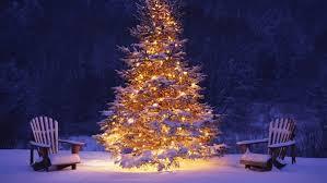 christmas tree w chairs.jpg