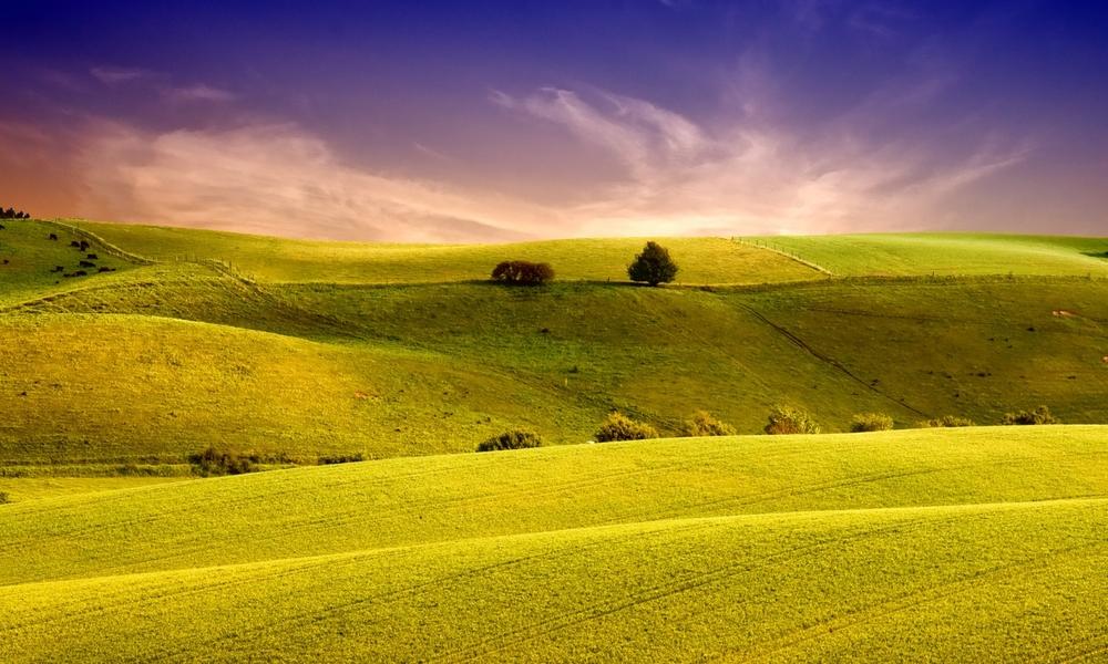 landscape 1500x900.jpeg