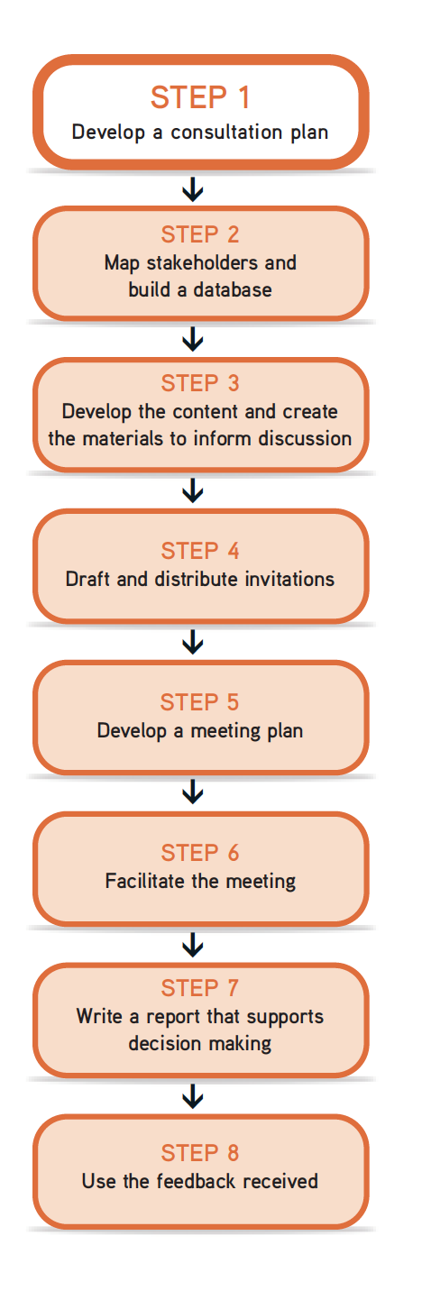 "Picture of 8 steps flow chart, with Step 1 ""Develop a consultation"" highlighted."