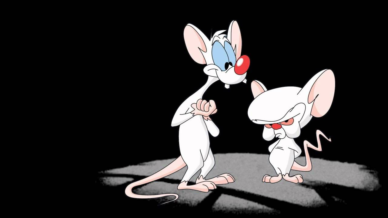 Pinky and the brain foto 72