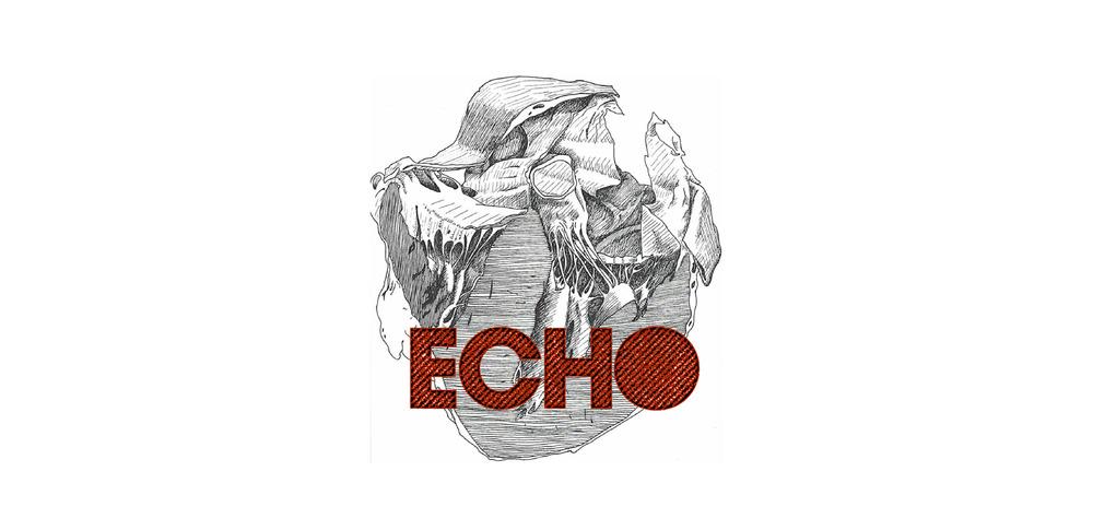 US_ECHO-01.jpg