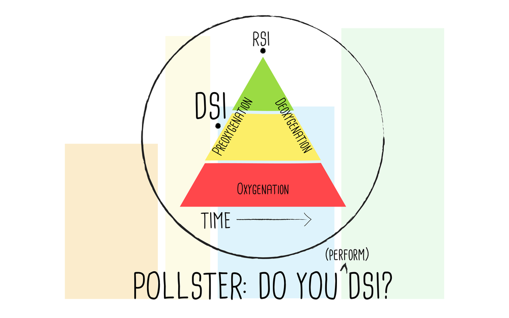 Pollster_DSI-01.png