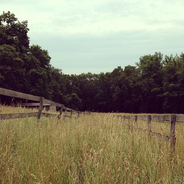 Wyeth landscape