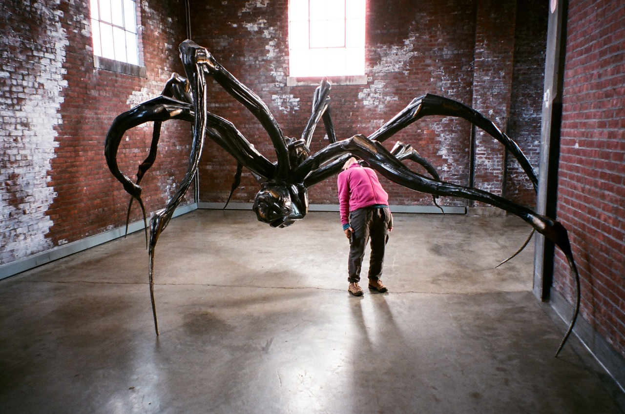 Looking at Louise Bourgeois