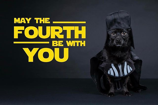 Vader has a message for you...