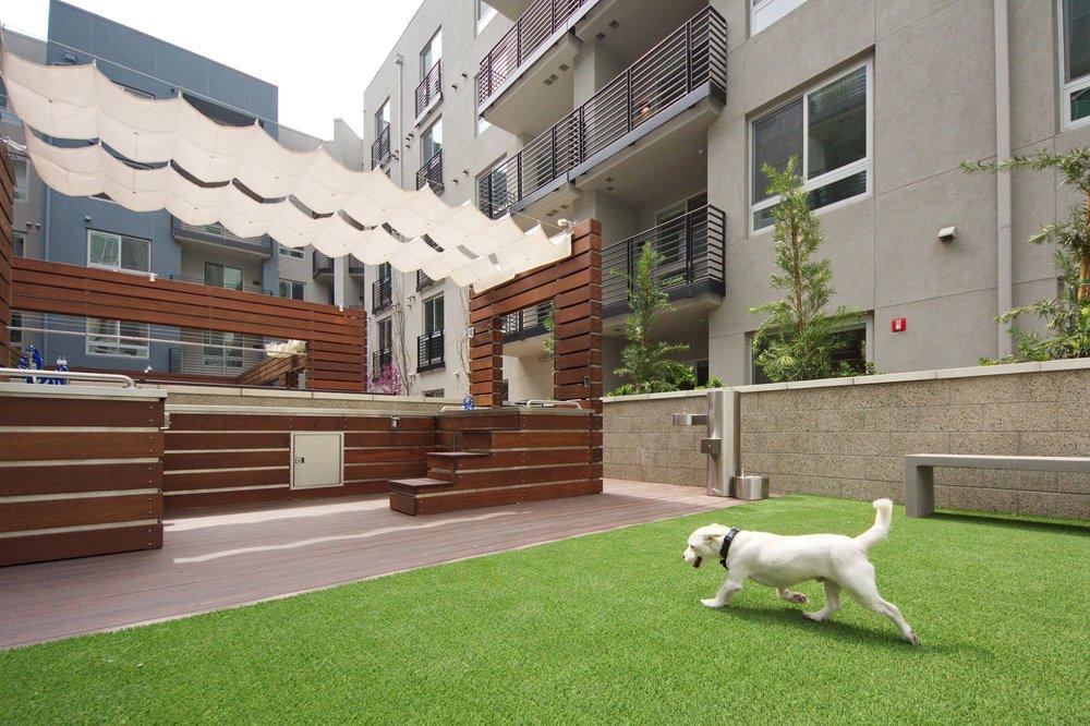 The-Camden-Apartments-Hollywood-Los-Angeles-CA-Dog-Den-2.jpg
