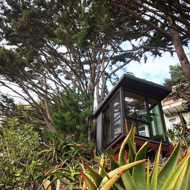 "I gonna call this one ""the lil' tree house"" #sfmodernspaces #modernspacesandsheds #modern #shed"