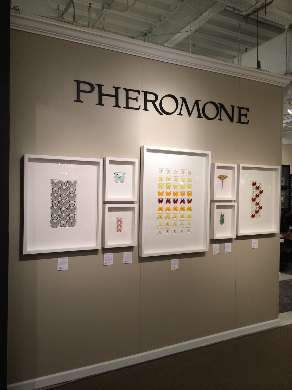 On to one of the big exhibit halls! I love the art work at Pheromone. They have agreements with zoos to acquire their insects, birds, lizards etc. that have passed away, and they use them in beautiful collages. I love that the animals' beauty lives on for a while longer.