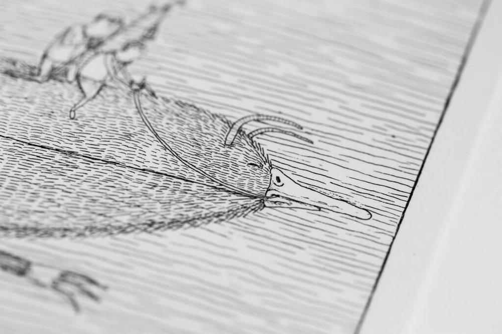 Bisser-Migration-Etching-Print-07-1024x683.jpg