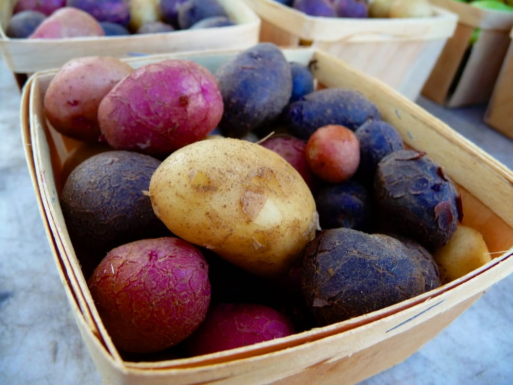 Purple, Red and Yukon Potatoes