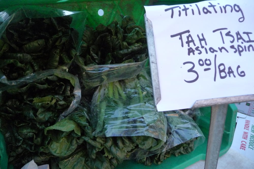 Asian Spinach (Tah Tsai)
