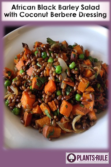 African Black Barley Salad with Coconut Berbere Dressing - Healthy, Oil-Free, Plant-Based, Whole Grain, Vegan