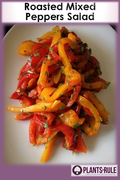 Roasted Mixed Pepper Salad - Healthy, Oil-Free, Gluten-Free, Grain-Free, Plant-Based Vegan Summer Recipe Pin