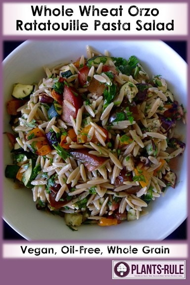 Whole Wheat Orzo Ratatouille - Healthy, Whole Grain, Pasta Salad, Oil-Free, Plant-Based, Vegan, Italian Recipe with Eggplant, Zucchini, Bell Pepper, Tomatoes Pin