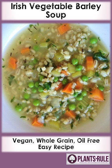 7 best fall soups the ultimate healthy plant based recipes to use irish barley vegetable soup pin pin it share it forumfinder Gallery