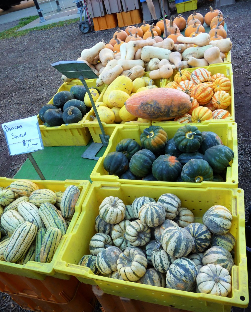 Chef's Tip: You can also substitute with any other heirloom fall squash, like acorn, kabocha, buttercup, celebration, and butternut