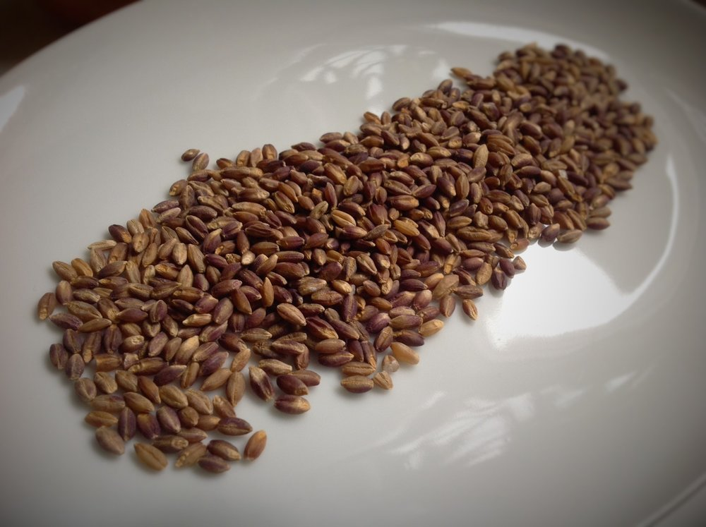 Chef's Tip: Barley is a whole grain member of the wheat family, loaded with healthy plant-based protein and fiber.  Black barley is an heirloom variety, typically found in African cooking