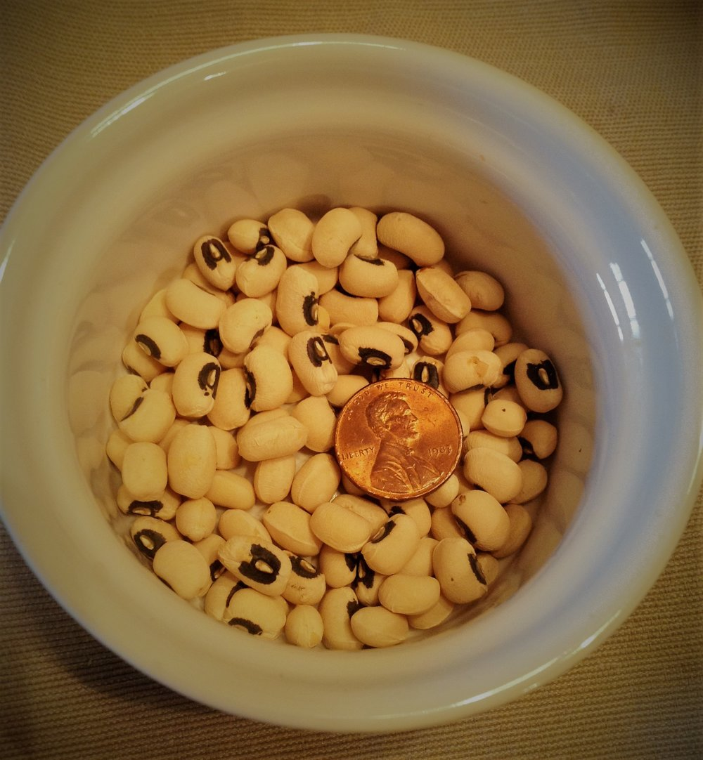 Chef's Plant-Based Tip:  Maybe it's the penny that brings good luck?  Or maybe it's all of the healthy fiber and vegan protein