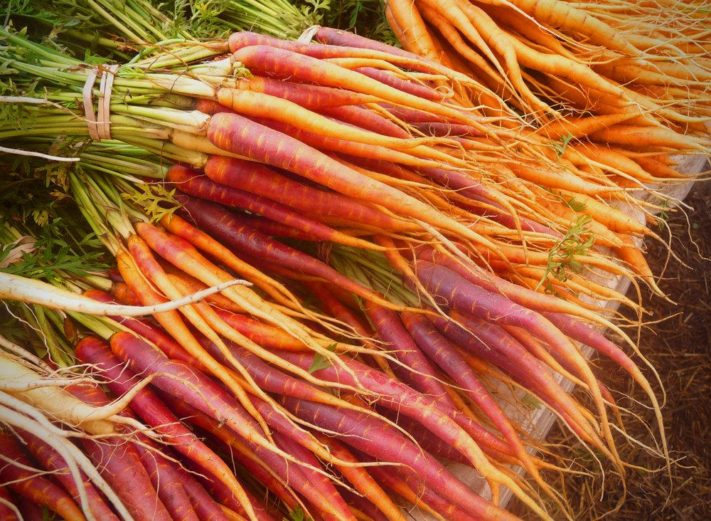 "Carrots are a healthy, naturally sweet root vegetable.  Enjoy them raw in salads, slaw, or as carrot ""chips"".  Steam, boil, or roast them as an easy, oil-free vegetarian side dish"