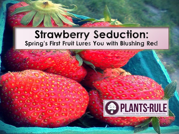 Strawberry Seduction Blog.jpg