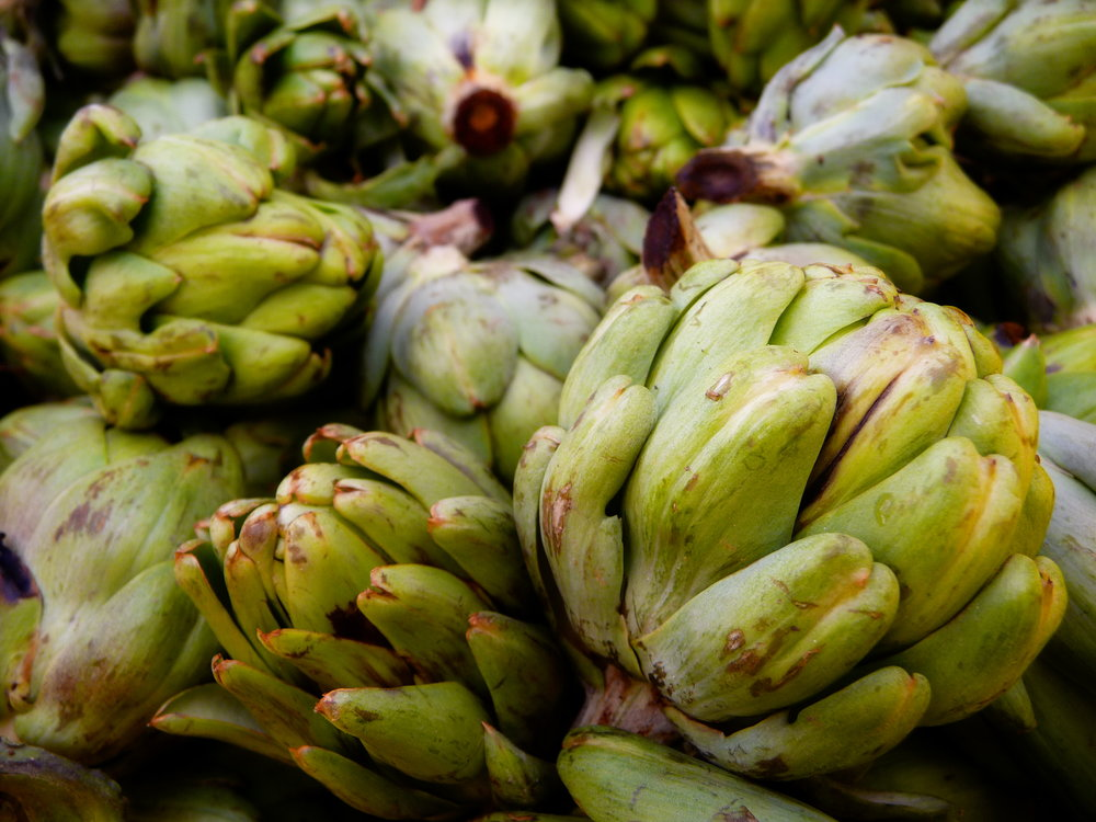 Fresh Artichokes are a delicious, healthy vegetable.  Bake, steam , or braise them for your favorite oil-free vegan recipes