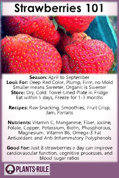 Strawberries 101 - Healthy Infographic Pin for Season, How to Choose, Store, Use, and Strawberry Recipes and Nutrition