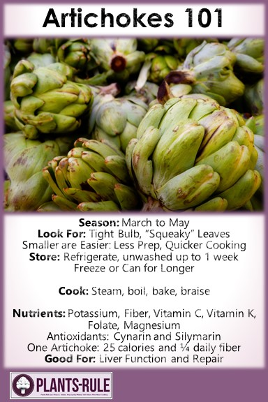 Artichokes 101 - Healthy Infographic Pin for Season, How to Choose, Store, Cook, and Nutrition