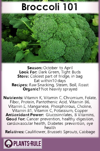 Broccoli 101 - Healthy Infographic Pin for Season, How to Choose, Store, Cook, and Nutrition