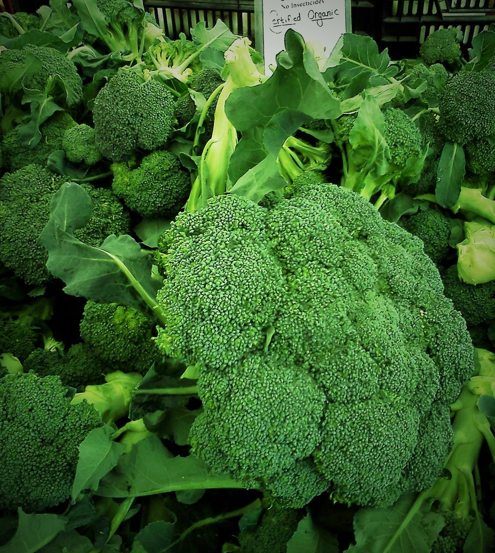 Broccoli - How to Pick, Store, and CookChoosing Organic, Eating Local, In-SeasonHealthy, Plant-Based, Oil-Free Vegan Recipes