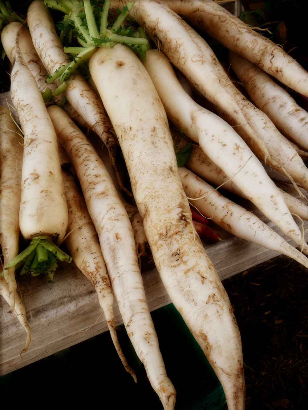 "Chef's Plant-Based Tip:""Daikon"" literally translates from the Japanese for ""white radish"".  This long, white radish is generally available year-round.  It is often used in detox recipes due to its natural diuretic effects"