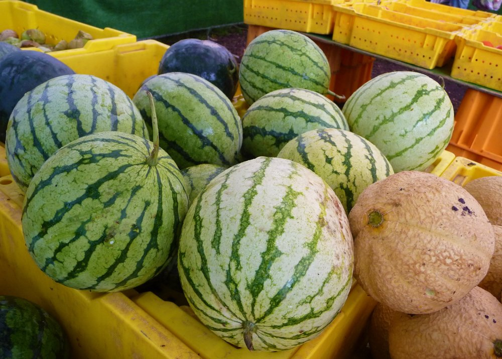 Melons are a healthy, naturally sweet fruit.  Melons are in prime season in the US during the summer.  June through August offers the most varieties of melon, with the sweetest flavors.  Outside of summer, most melons are imported from Mexico or South America