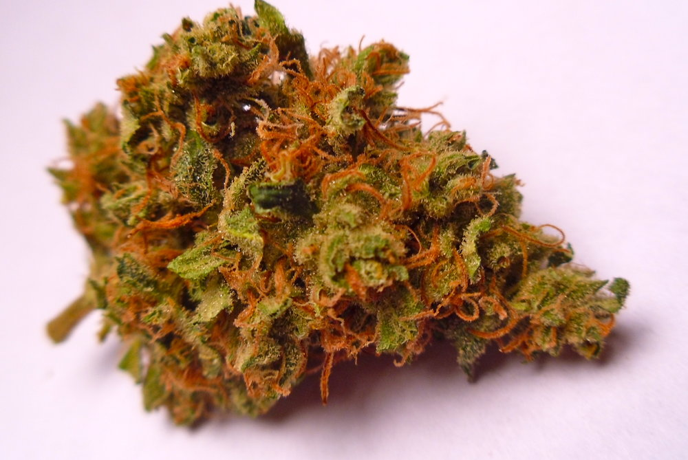 weed mango indica sativa marijuana strain
