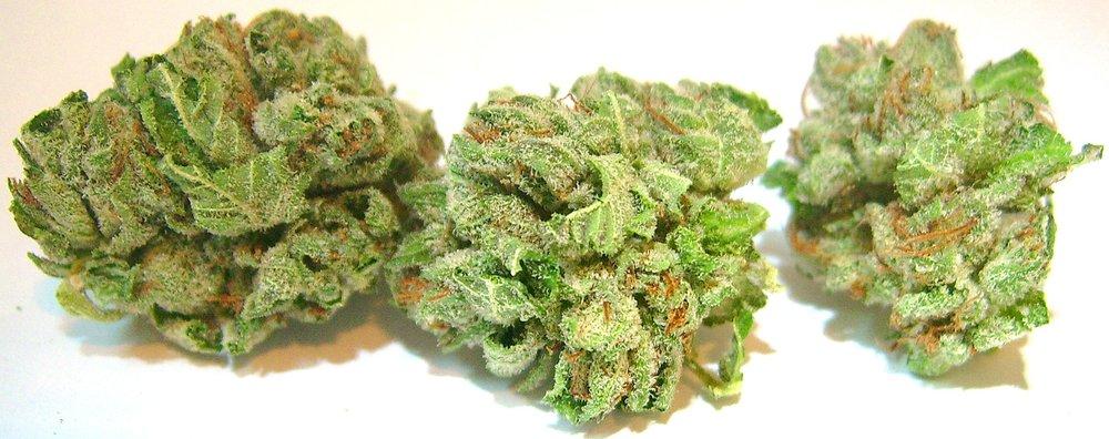 hindu kush weed strain