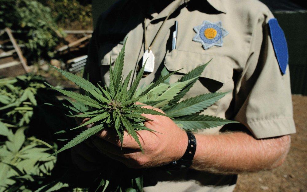 DEA CSA Controlled Substance Act police marijuana cannabis