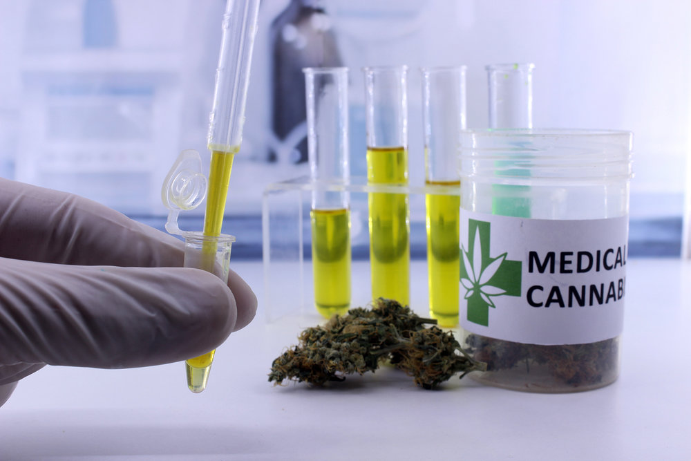 medical cannabis fighting cancer